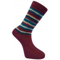 Komodo Organic Cotton Striped Socks